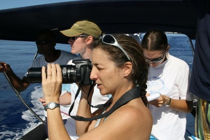 Volunteer-Work-Mauritius-Monitoring-Dolphins-1